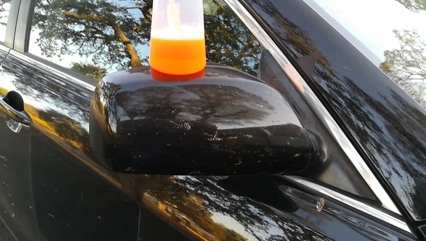 Car bug spray